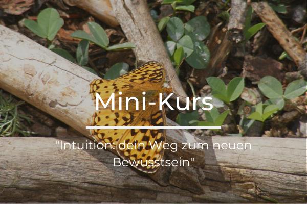 Mini-Kurs: dein Weg zum neuen Bewusstsein
